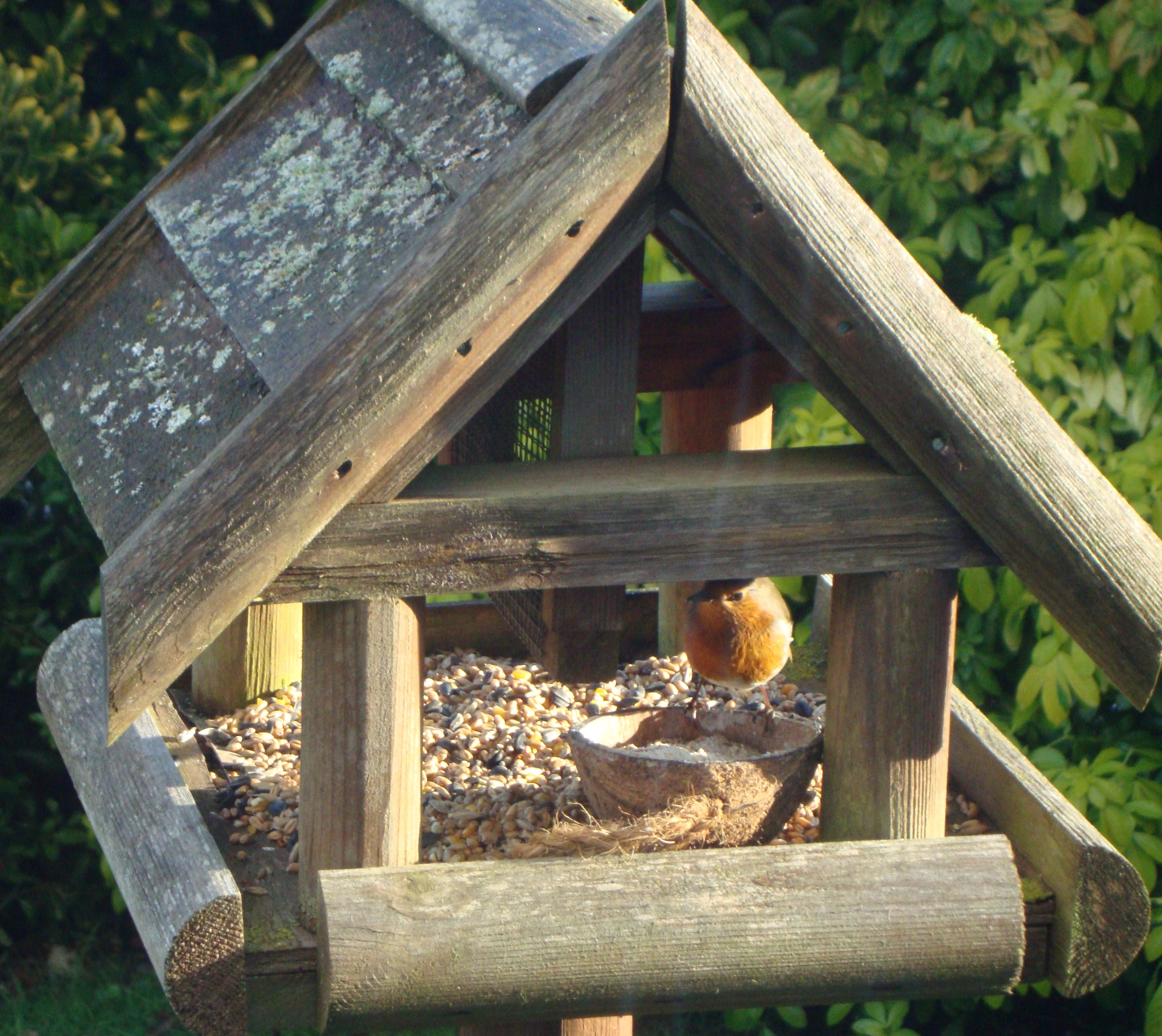 bird table plans